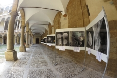 2015-palermo-Mostra2